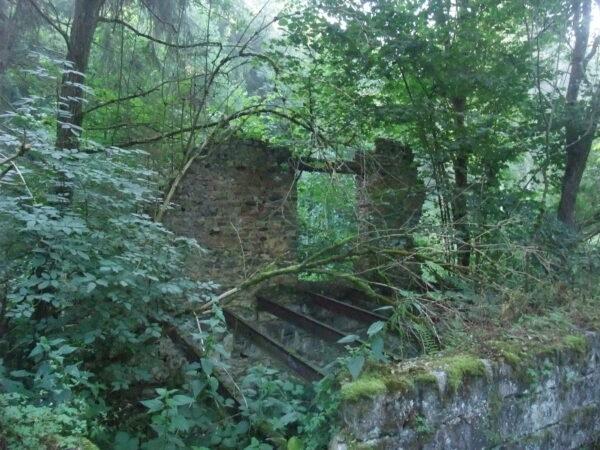 Balade du Moulin de Mahoux